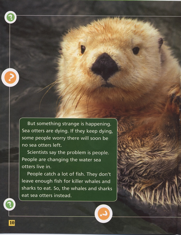 Sea Otter Mystery, Water, Page 10