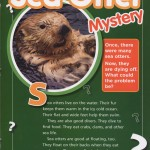 Sea Otter Mystery, Water, Page 9